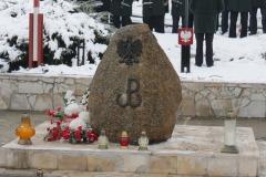 2015-02-02 Obchody 71. rocznicy rozstrzelania 54 zakładników w dębickiej cegielni