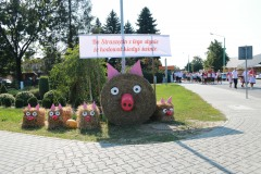 2019-08-25 Powiatowe dożynki w Straszęcinie