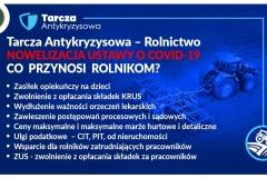 2020-03-31 Jakie rozwiązania wprowadza tarcza antykryzysowa?